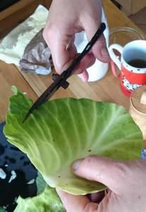 Kohlblatt mit einer Schere zuschneiden