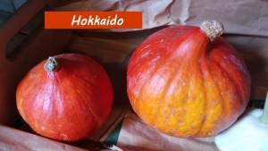 Foto von zwei Hokkaido-Kürbissen