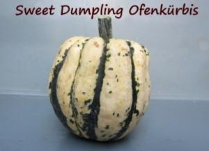 SweetDumplingOfenkuerbis_K My